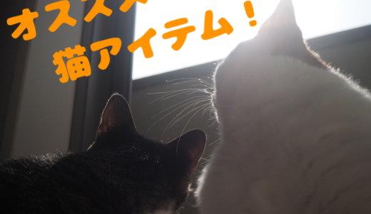 猫と暮らすなら必見!買って良かった超オススメ猫アイテムをまとめてご紹介!