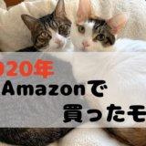 Amazon 2020 買った オススメ 猫グッズ