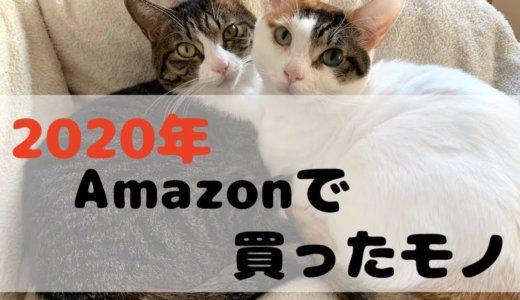 2020年Amazonで買ったオススメな猫グッズを10選&違うところで買ったモノをご紹介!