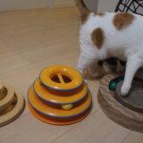 グルグル サークル タワー レビュー 猫 おもちゃ