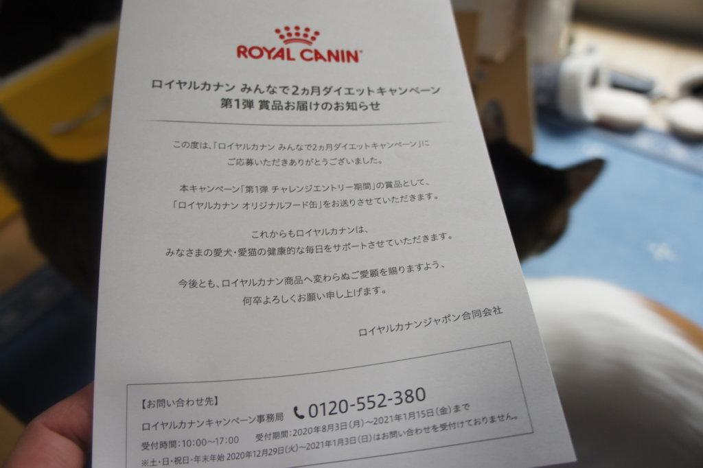 ロイヤルカナン ロイカナ オリジナルフード缶 キャンペーンダイエット キャットフード