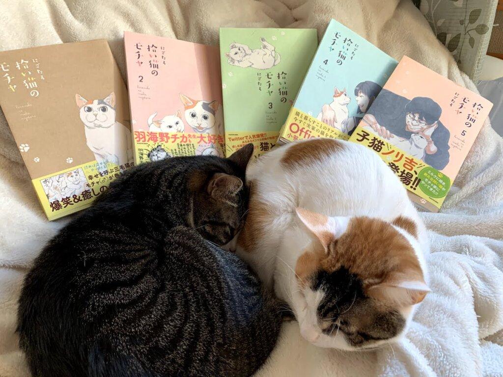モチャ 三毛猫 ミルク 猫漫画 猫マンガ 感想 レビュー 書評 Twitter SNS 5巻