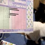 猫アレルギー 血液検査 花粉症 ハウスダスト