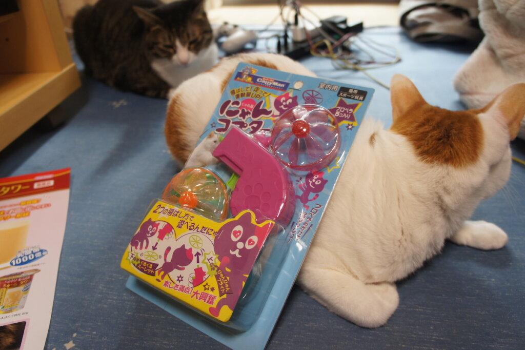 にゃんコプター 猫 おもちゃ プロペラ キャッティーマン キジ白 三毛猫
