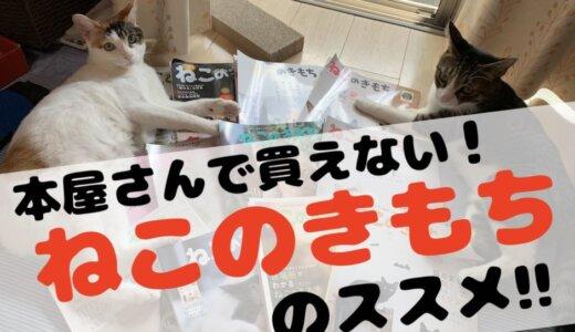 「ねこのきもち 」はネコと暮らす基本知識と限定の付録が手に入るので猫飼い初心者にオススメ!とりあえず一年購読してみては?