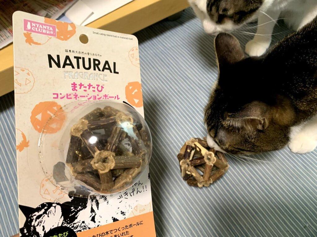 またたびコンビネーションボール キャットニップ レビュー 感想 キジ白 三毛猫 猫のおもちゃ
