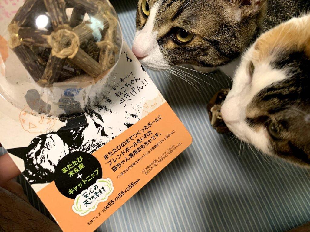 猫のおもちゃ またたびコンビネーションボール キャットニップ レビュー 感想 キジ白 三毛猫