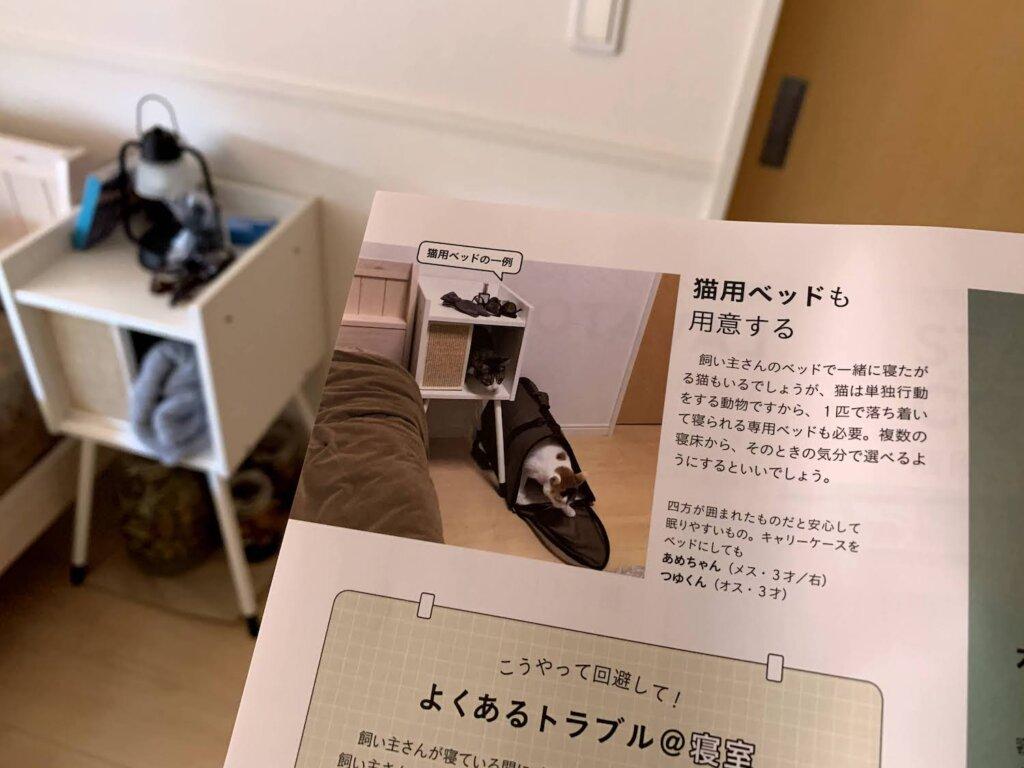 ねこのきもち  2021 7月号 掲載 デビュー 雑誌デビュー 載った 三毛猫 猫雑誌 キジ白