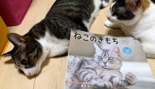 【掲載のお知らせ】「ねこのきもち」にあめ&つゆが載りました!